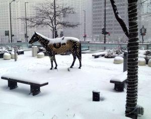 Horse at Hyatt 1